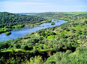 300px-guadiana_river